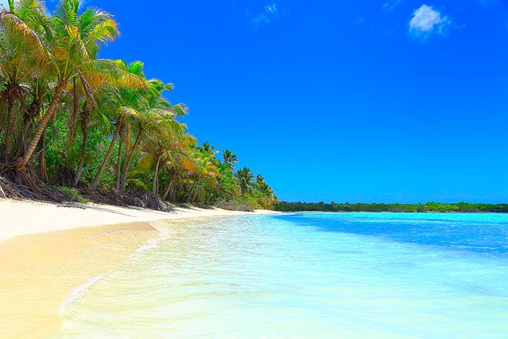 saona or catalina island la roamana dominican republic
