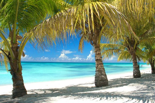Water or land? - How to choose a tour in Punta Cana