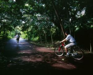 Ixtapa bike ride through nature