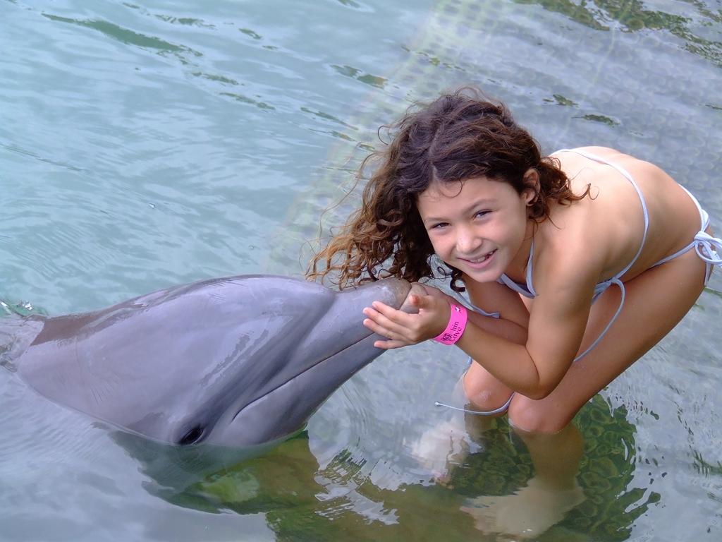 Dolphin Encounter - family vacations