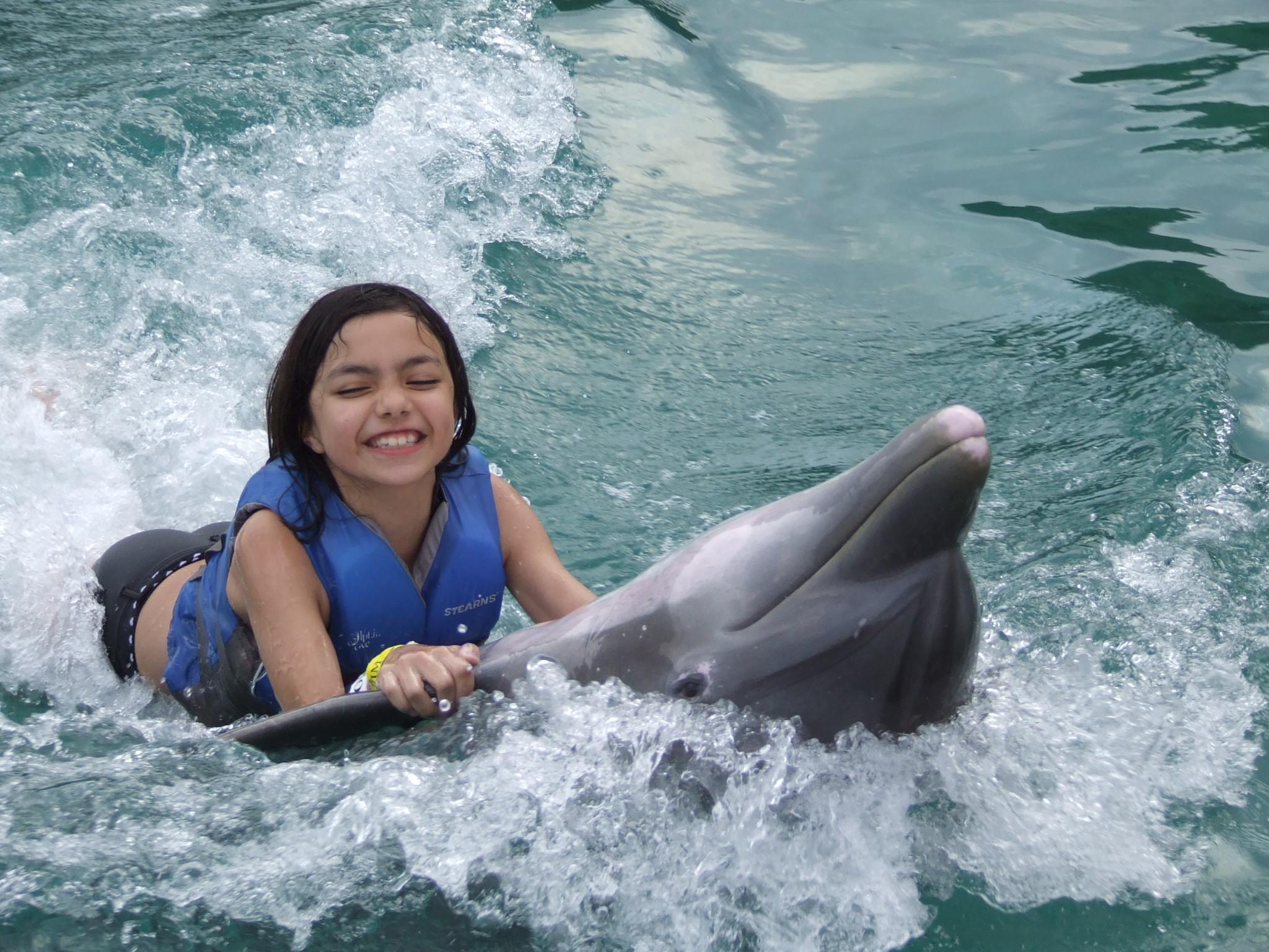Dolphin Swim - family vacations