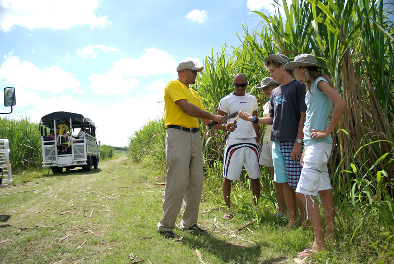 family adventure tours in punta cana