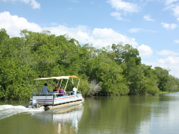 Black River - New experiences in the Caribbean
