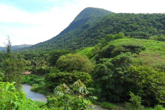 Coffee growing region, Oaxaca