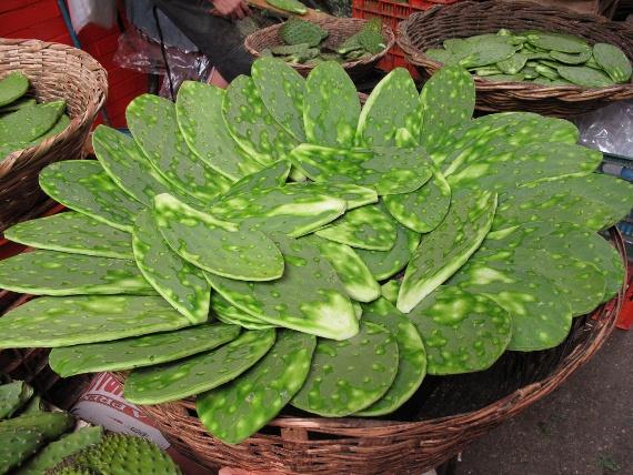 Nopales, Mexican market