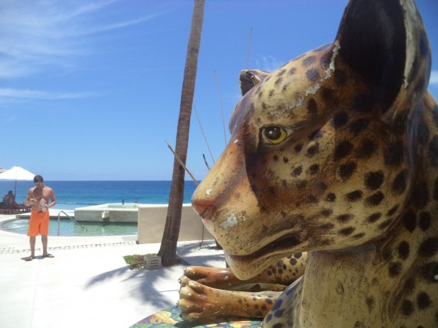 A ceramic tiger at the Secrets Marquis Los Cabos pool overlooking the Sea of Cortez