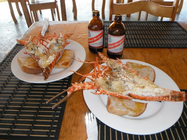Lobster and Red Stripe in Negril