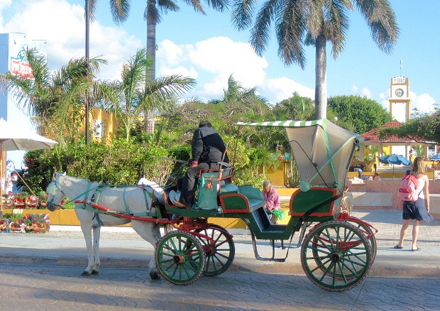 A horse and carriage in downtown Cozumel, Mexico