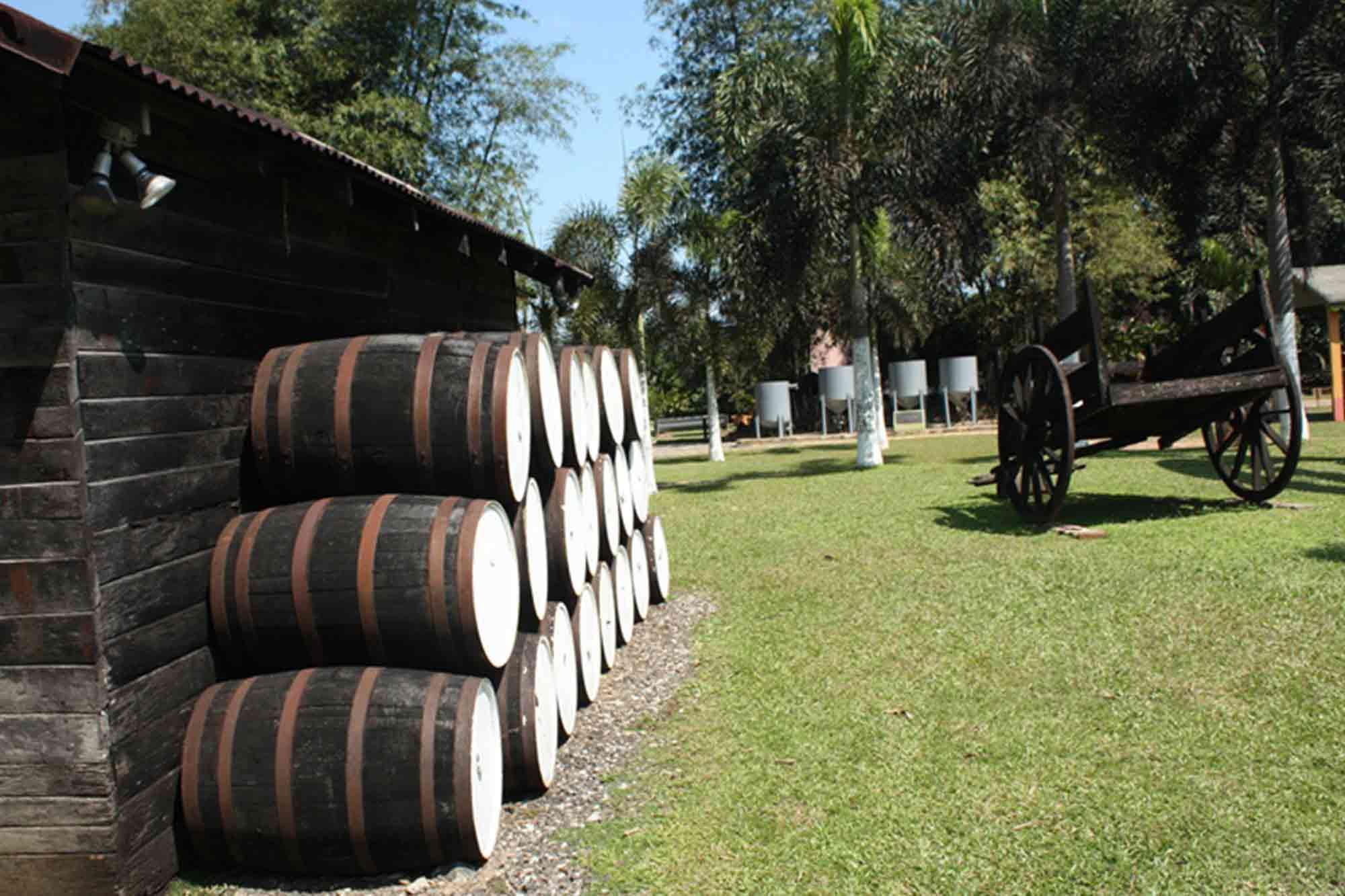 Appleton Rum Factory Jamaica Estate Barrels
