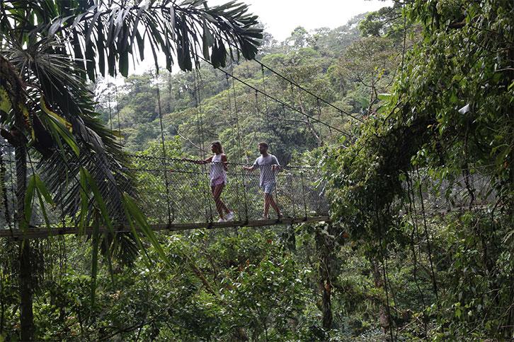 guanacaste, costa rica weather cloudy arenal mistico hanging bridges park