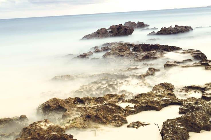 seaweed-on-mexico-beaches-tulum