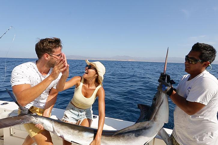 Cabo Fish Species Billfish Marlin Sailfish