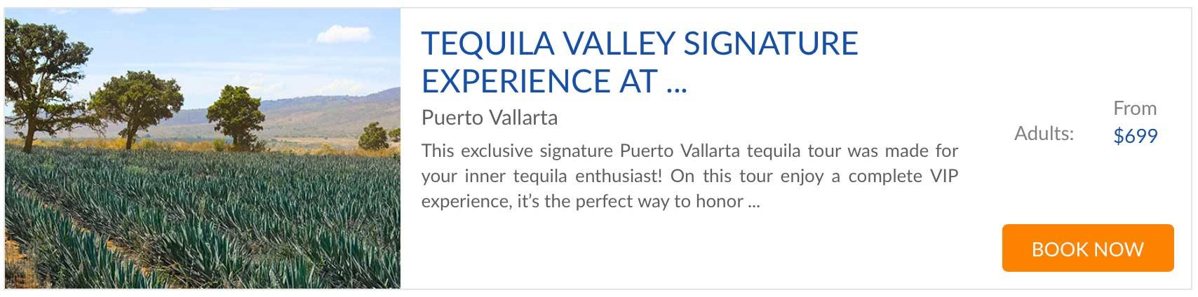 signature experience vallarta